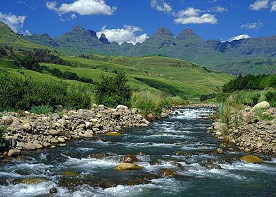 Drakensberg Mountain stream